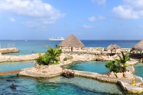 Dolphinarium in Cozumel Mexico with cruise ship in background